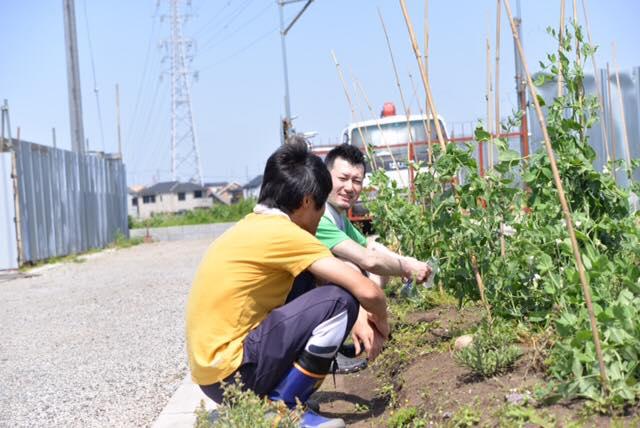農作業しながらの雑談