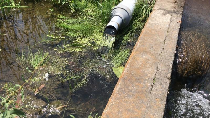 田んぼの注水口
